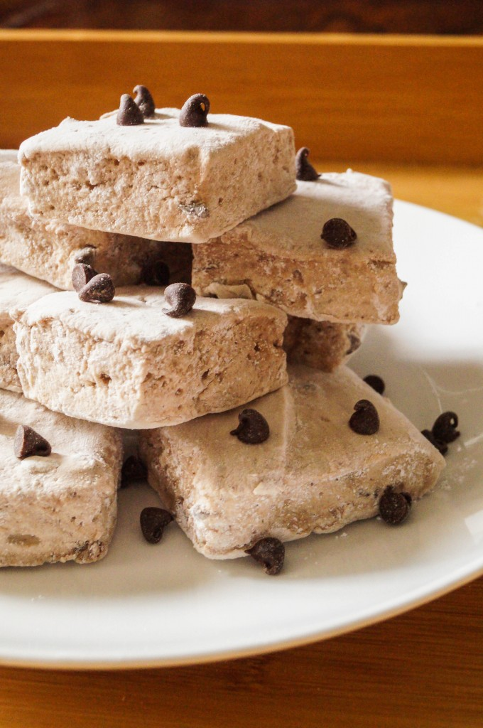 chocolate chip marshmallow (10 of 11)