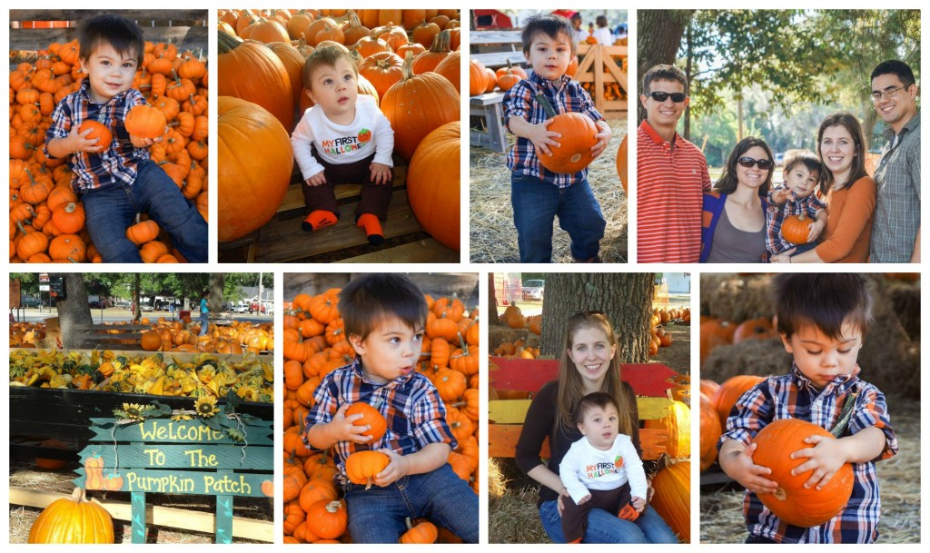 niceville pumpkin patch
