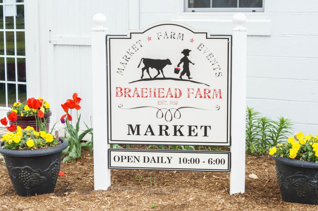 Braehead Farm (34 of 37)